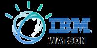 Startup IBM Watson